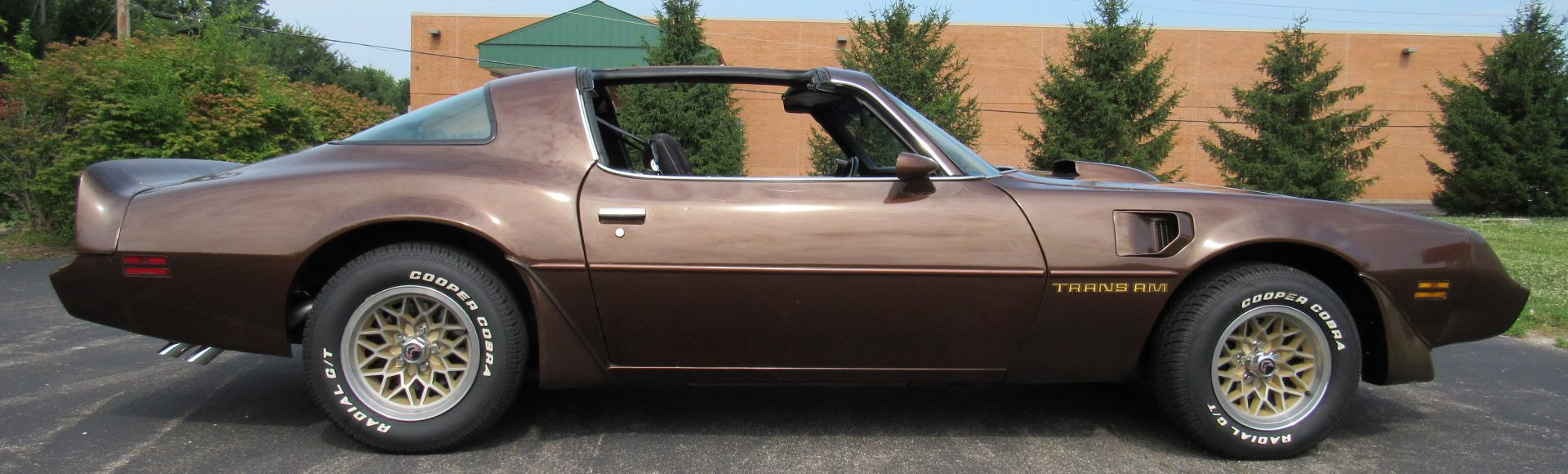 1979 Pontiac Trans Am, Auto, Built 350, $15,900